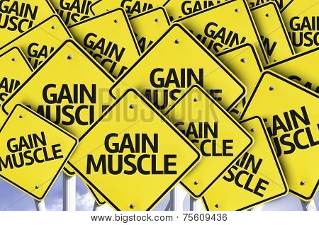 Gain Muscle written on multiple road sign