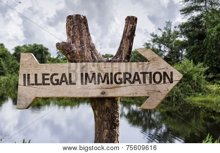Illegal Immigration wooden sign with a forest background
