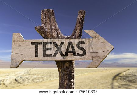 Texas wooden sign isolated on desert background