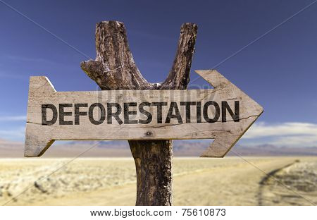 Deforestation wooden sign with a desert background
