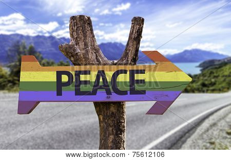 Peace in a Rainbow wooden sign with a street background