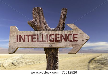Intelligence wooden sign with a desert background