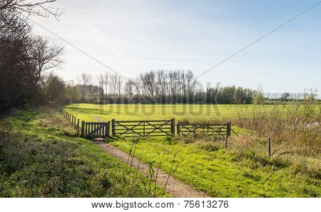 Polder Landscape With Fence And Gates