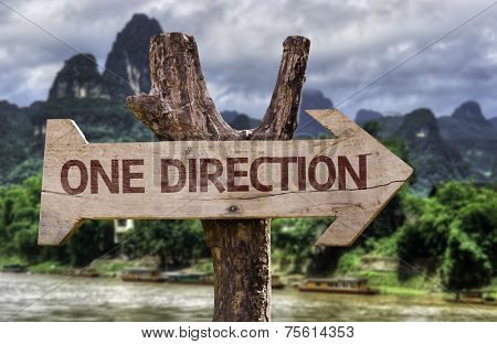 One Direction wooden sign with a forest background