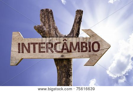 Exchange Program (In Portuguese) wooden sign with a sky on background