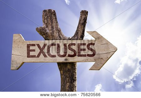 Excuses wooden sign on a beautiful day