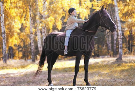 Autumn Forest, Happy Teenager Boy On The Horse