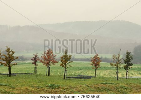 Misty Autumn Scenery