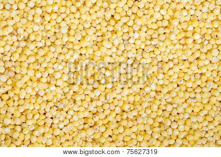 Food Background Of Yellow Grains Of Millet