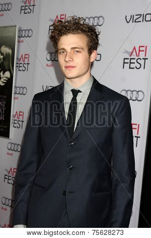 LOS ANGELES - NOV 6:  Ben Rosenfield at the AFI FEST 2014 Screening Of