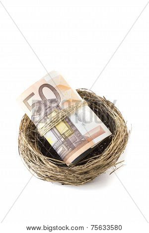 Fifty Euro Bills Inside A Bird's Nest