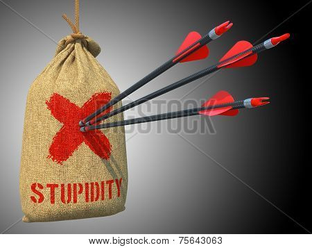 Stupidity - Arrows Hit in Red Target.