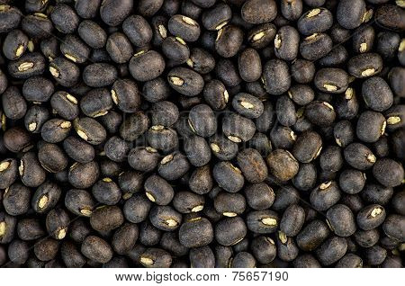 Black Urad Dal Bean Lentils