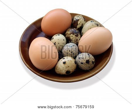 Eggs Of The Quail And Of The Hen On The Plate