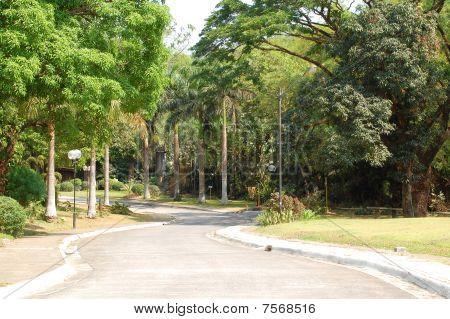 mmldc's pathway