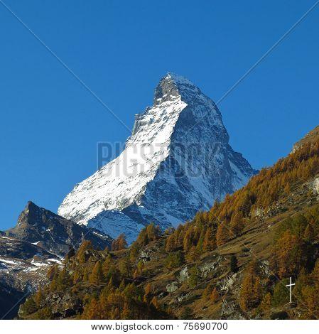Matterhorn And Yellow Larch Forest