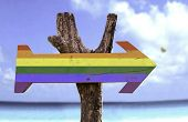 picture of transgendered  - Rainbow wooden sign with a beach on background - JPG