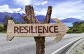 picture of bouncing  - Resilience sign with a road background - JPG