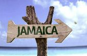 picture of rastafari  - Jamaica wooden sign with a beach on background - JPG