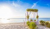 image of wedding arch  - wedding arch and set up on beach - JPG