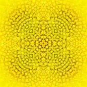 foto of fibonacci  - Closeup beautiful warm sunflower background or textuer - JPG