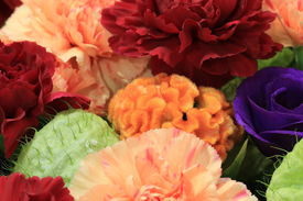 stock photo of carnations  - Cockscomb flower and Carnation flowers and Rose - JPG
