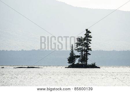 Trees On Small Island