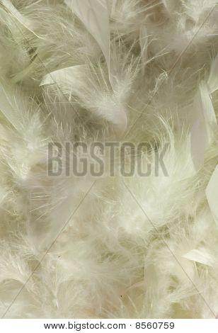 Fluffy Slushy Smoky Snow White Feather Background