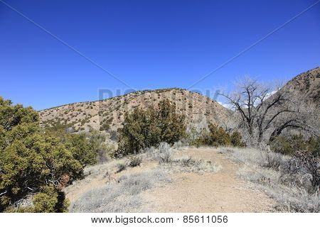 Wilderness of New Mexico high desert