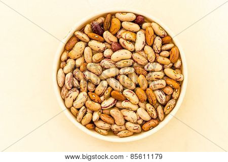 macro closeup view of pinto beans kept in a bowl on a plain background