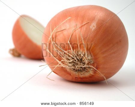 brown onion study to cry for!