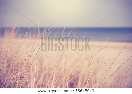 Blurred Summer Beach Background In Retro Vintage Style.