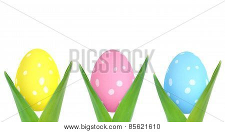 Decorated Easter eggs with spots blossoming from plants