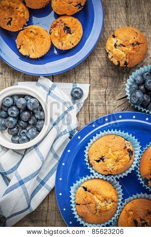 Blueberry muffins on