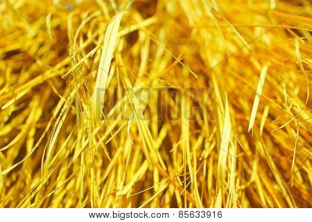 Yellow Dry Grass Background.