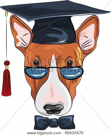 vector funny graduated dog Bullterrier