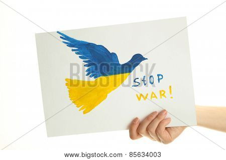 Hand holding paper dove with painted Ukraine flag, isolated on white