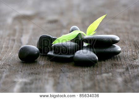 Stack of black sea pebbles with green leaves on rustic wooden background