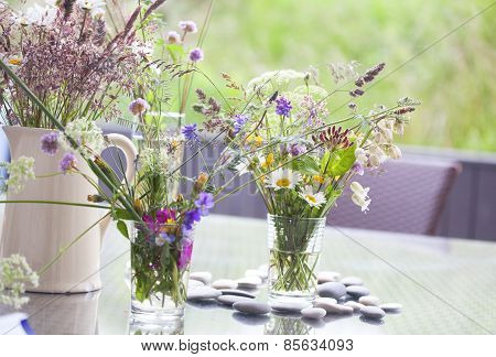 Picked Wild Flowers