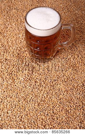 Mug Of Beer On Malt
