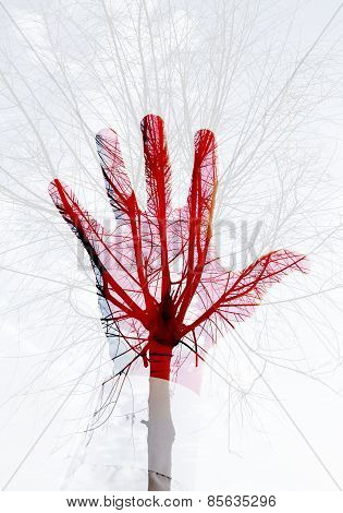 Photo Collage, Red Male Hand And Leafless Tree Pattern