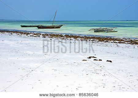 Sand  Beach   In Zanzibar