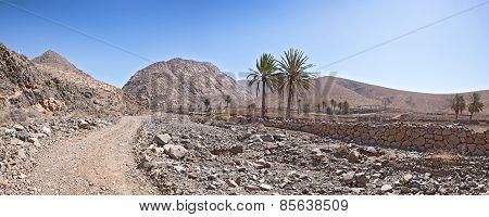 Fuerteventura - Landscape near Buen Paso