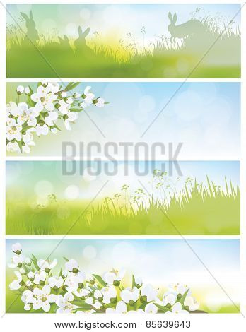Vector spring banners blossoming tree branch nature backgrounds.