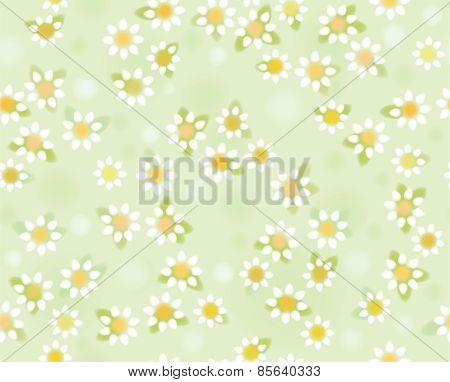 Vector chamomiles seamless pattern soft blurred effect.