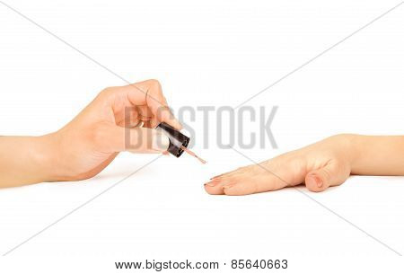 Manicurist Applying Nail Polish On Female Fingers