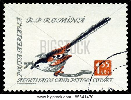 Vintage  Postage Stamp. Long-tailed Tit.