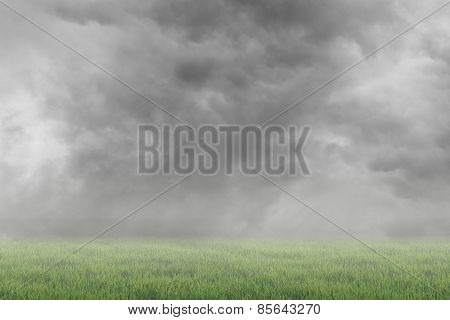 Scenic of clouds on heaven above the ground. Good background for you to put text or people on the ground.