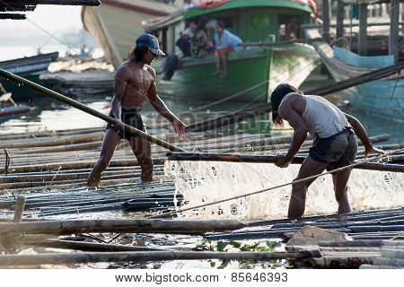 Loading The Bamboo Shafts