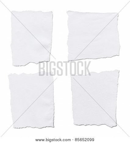 Torn White Paper